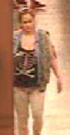 Attempting to Identify - Theft - 13-40906